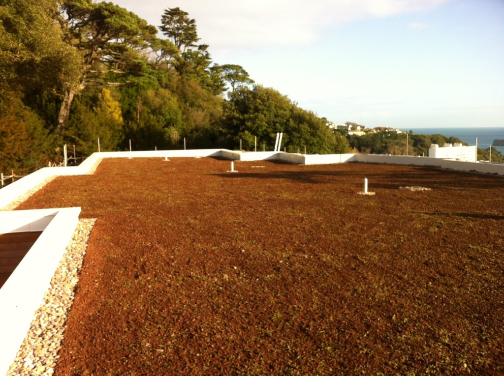Df Roofing Waterproofing Solar Green Roofs